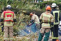 15-09-11 Ast morscher Kastanie verletzt Passanten auf Sonnenallee