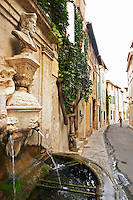 On a street in the old town A fountain with water and a bust of Nostradamus by Liotard de Lambesc in 1859. on the street corner of Rue Nostradamus, a woman walking in the background, a tree vine clinging to the house facade, labyrinth. Water spewing out of the fountain spouts. Fontaine Ancienne. Saint Remy Rémy de Provence, Bouches du Rhone, France, Europe