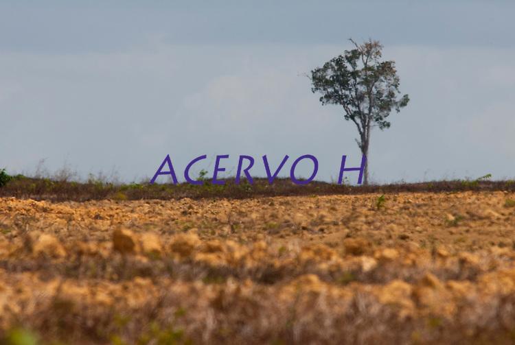 Pr&oacute;ximo a cidade &aacute;rea para planta&ccedil;&atilde;o de soja.<br /> <br /> Paragominas, Par&aacute;, Brasil.<br /> Foto Paulo Santos<br /> 04/11/2009