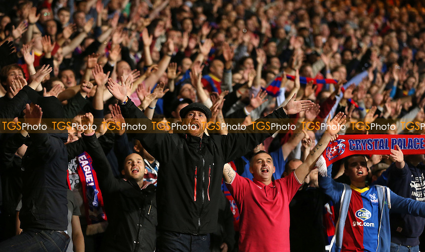 Crystal Palace fans - Crystal Palace vs Fulham, Barclays Premier League at Selhurst Park, Crystal Palace - 21/10/13 - MANDATORY CREDIT: Rob Newell/TGSPHOTO - Self billing applies where appropriate - 0845 094 6026 - contact@tgsphoto.co.uk - NO UNPAID USE