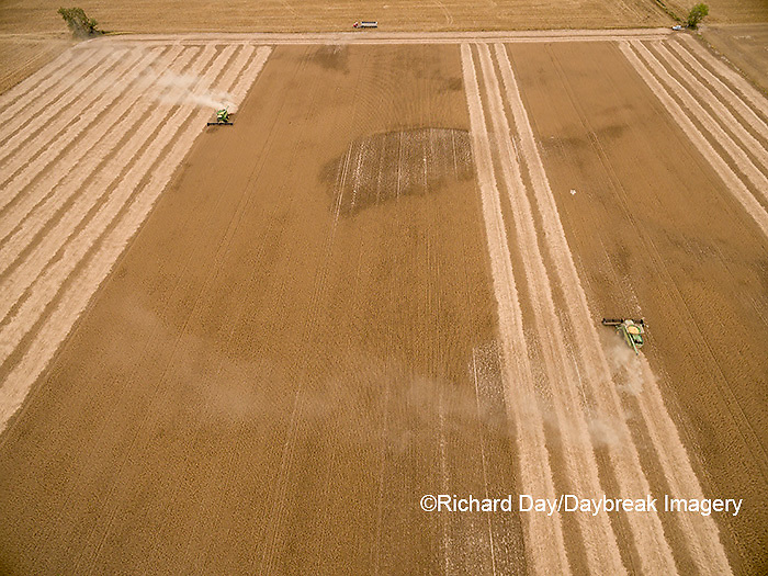 63801-08901 Soybean Harvest, 2 John Deere combines harvesting soybeans - aerial - Marion Co. IL