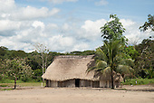 Aldeia Baú, Para State, Brazil. Typical Kayapo village house made of wooden slat walls and a palm thatch roof with a palm tree in front.