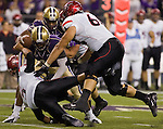 San Diego State quarterback Ryan Katz  looses the ball after being sacked by  Washington safety Travis Feeney  in a college football game at CenturyLink Field in Seattle, Washington on September 1, 2012  The Huskies beat the Aztecs 21-12.  © 2012. Jim Bryant Photo. All Rights Reserved.
