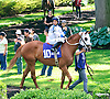 Valuable Charmer before The Our Mims Stakes at Delaware Park on 6/8/16