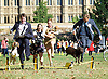 Westminster Dog of the Year 2016 <br /> in Victoria Tower Gardens, London, Great Britain <br /> 8th September 2016 <br /> organised by The Kennel Club and Dogs Trust together with dog loving MPs and Peers. <br /> <br /> <br /> \<br /> <br /> <br />  Liz Saville Roberts MP with her rescue dog Fiona <br /> <br /> <br /> Craig Williams MP with Winston <br /> <br /> Anna Turley with Clem <br /> <br /> Craig McKinlay MP with Libby <br /> <br /> Photograph by Elliott Franks <br /> Image licensed to Elliott Franks Photography Services