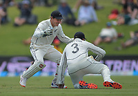 NZ's BJ Watling congratulates Ross Taylor for catching England's Ben Stokes during day two of the international cricket 1st test match between NZ Black Caps and England at Bay Oval in Mount Maunganui, New Zealand on Friday, 22 November 2019. Photo: Dave Lintott / lintottphoto.co.nz