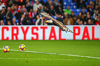 Bald Eagle Crystal Palace mascot Kayla the Eagle during the EPL - Premier League match between Crystal Palace and Liverpool at Selhurst Park, London, England on 29 October 2016. Photo by Steve McCarthy.