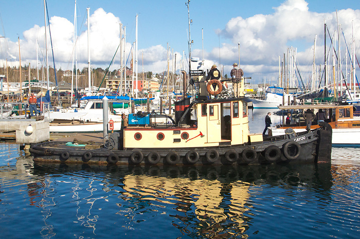 Port Townsend, Boat Haven Marina, classic tugboat, Cayou, preparing to haul out, Port of Port Townsend, Jefferson County, Olympic Peninsula, Puget Sound, Washington State, Pacific Northwest, USA,