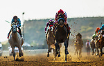 DEL MAR, CA - JULY 29: Roadster breaks his maiden with Mike Smithat Del Mar on July 2, 2018 in Del Mar, California.(Photo by Alex Evers/Eclipse Sportswire)