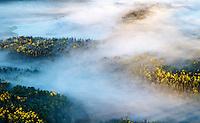 Early fall landscape of fog over lakes on Kenai Penninsula, Aerial photos   September.  2015  southcentral Alaska