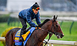 November 1, 2018: McKinzie, trained by Bob Baffert, exercises in preparation for the Breeders' Cup Classic at Churchill Downs on November 1, 2018 in Louisville, Kentucky. Michael McInally/Eclipse Sportswire/CSM