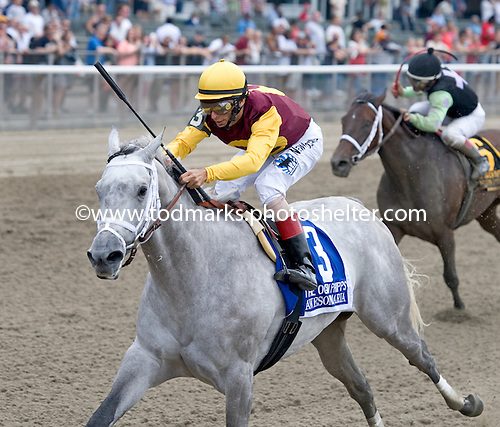 Awesome Maria wins the Grade 1 Ogden Phipps with John Velazquez at Belmont Park.