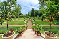 France, Indre-et-Loire (37), Amboise, château Gaillard, escalier vers l'orangerie et pots d'agrumes