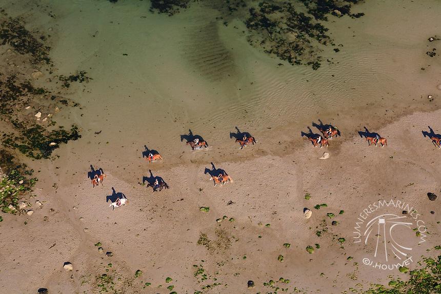 France, Normandie, Manche (50), Barfleur, chevaux sur la plage (vue aérienne) // France, Normandy, Manche, horses on the beach, Barfleur (aerial view)