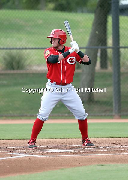 Jake Turnbull - 2017 AIL Reds (Bill Mitchell)