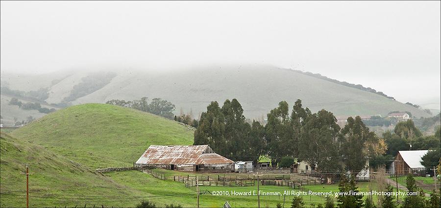 Sonoma pastureland in winter fog