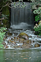 Cascada de agua vista en el Jardín Botánico, José Celestino Mutis, de la ciudad de Bogotá, Colombia./ Waterfall seen at the Botanic Garden, Jose Celestino Mutis, in Bogota, Colombia. Photo: VizzorImage/ Gabriel Aponte / Staff
