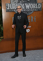 LOS ANGELES, CA - JUNE 12: Jeff Goldblum at Jurassic World: Fallen Kingdom Premiere at Walt Disney Concert Hall, Los Angeles Music Center in Los Angeles, California on June 12, 2018. <br /> CAP/MPIFS<br /> &copy;MPIFS/Capital Pictures