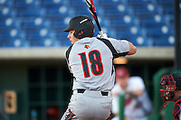 Louisville Cardinals catcher Pat Rumoro (18) at bat during a game against the Ball State Cardinals on February 19, 2017 at Spectrum Field in Clearwater, Florida.  Louisville defeated Ball State 10-4.  (Mike Janes/Four Seam Images)