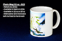 Coffee Mug 11oz White - Have any photo from Chris Bidleman Photography collection on your cup.  Available in black mug too.<br /> <br /> To order, select your photo from the library, pick the &quot;buy&quot; button, and go to the &quot;products&quot; tab to select your size and color.