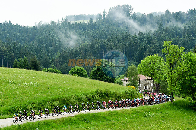 The peloton in action during Stage 1 of the Criterium du Dauphine 2017, running 170.5km from Saint Etienne to Saint Etienne, France. 4th June 2017. <br /> Picture: ASO/A.Broadway | Cyclefile<br /> <br /> <br /> All photos usage must carry mandatory copyright credit (&copy; Cyclefile | ASO/A.Broadway)