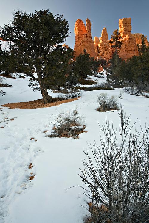Snow at Red Canyon