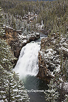 67545-09718 Upper Falls,  Yellowstone National Park, WY