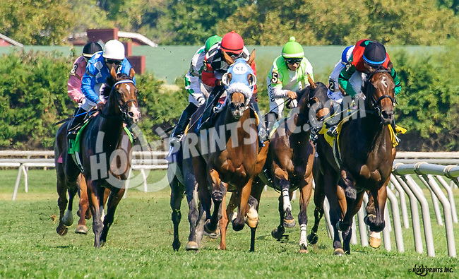 Tarkia winning before being disqualified at Delaware Park on 9/22/16