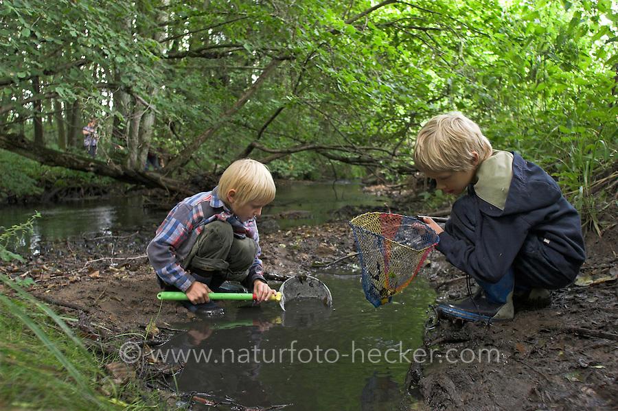 Kinder keschern in einem Bach und beobachten Wassertiere