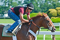 I'll Have Another with his exercise rider Jonny Garcia up, jogs over the Belmont main track in preparation for the 2012 G1 Belmont Stakes at Belmont Park in Elmont, NY.