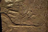 Petroglyphs, Maha ulepu