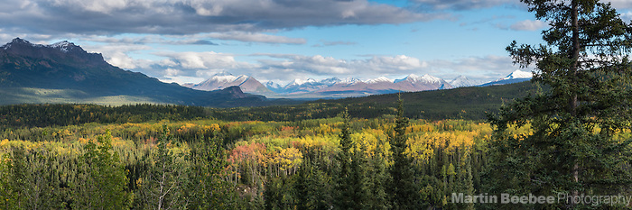 Fall colors below mountains, Denali National Park, Alaska