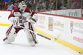 Steve Michalek (Harvard - 34) - The Harvard University Crimson defeated the visiting Princeton University Tigers 5-0 on Harvard's senior night on Saturday, February 28, 2015, at Bright-Landry Hockey Center in Boston, Massachusetts.