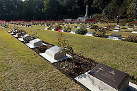 Graves at the Commonwealth War Graves Cemetery in Hodogaya, Yokohama, Japan. Sunday November 13th 2016. Each year representatives of the Commonwealth nations, along with American and other European nations that lost servicemen fighting the Japanese in World War 2, hold a multi-faith service of remembrance at this cemetery. This is the only cemetery for war dead in japan that is managed by the Commonwealth War Graves Commission.