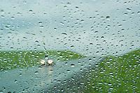Road, cars through wet windshield-South Dakota