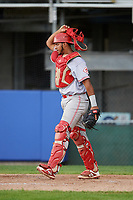 Greeneville Reds catcher Jose Tello (41) during the second game of a doubleheader against the Princeton Rays on July 25, 2018 at Hunnicutt Field in Princeton, West Virginia.  Greeneville defeated Princeton 8-7.  (Mike Janes/Four Seam Images)