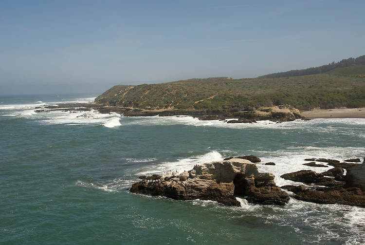 California, San Luis Obispo County: Montana de Oro state park offers scenic coastal views and tide pool exploring..Photo caluis176-70904..Photo copyright Lee Foster, www.fostertravel.com, 510-549-2202, lee@fostertravel.com