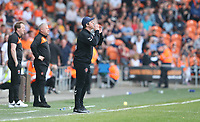 Fleetwood Town manager Joey Barton shouts instructions to his team from the dug-out <br /> <br /> Photographer Stephen White/CameraSport<br /> <br /> The EFL Sky Bet League One - Blackpool v Fleetwood Town - Monday 22nd April 2019 - Bloomfield Road - Blackpool<br /> <br /> World Copyright © 2019 CameraSport. All rights reserved. 43 Linden Ave. Countesthorpe. Leicester. England. LE8 5PG - Tel: +44 (0) 116 277 4147 - admin@camerasport.com - www.camerasport.com
