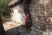 28 year old Asha Devi is 6 months pregnant and is seen doing household chores in their house in Saptari, Nepal. <br /> Asha Devi got married when she was 14. She got pregnant after 6 months of her marriage. Her first child survived for 6 days, she woke up next to a dead baby. She was pregnant two months later. Asha Devi's 2nd daughter survived for 9 months and later died due to prolonged fever. 3 months after her daughter died, Asha was pregnant again and within w months, she had spontaneous abortion. She was pregnant with Radha Kumari mandal who was acutely malnourished. Radha was admitted when she was 36 months old on October, 20th 2013. MUAC - 110 mm, Weight - 7 kg, Height - 75 cm. Radha was discharged on Dec 6, 2013 - her MUAC at the time of discharge was 128mm, Weight 8.8kg and height- 75.5 cm. She consumed 100 sachets of RUTF and gained 5gm/day while on the programme. <br /> Rukmini, her second daughter was born a year after Radha was born. Rukmini was severely malnourished too. She was admitted on Feb 16th, 2014. Her MUAC was 119mm, weight - 11 kg, and height - 96 cm. Her third daughter Sharda is severely malnourished. Sharda is under RUTF.  <br /> Asha Devi is pregnant for the 7th time and is 6 months pregnant.