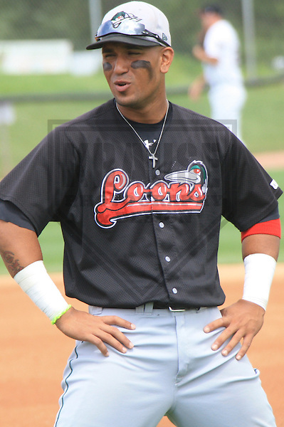 APPLETON - JULY 2010: Jaime Ortiz of the Great Lakes Loons, Class-A affiliate of the Los Angeles Dodgers, during a game on July 19, 2010 at Fox Cities Stadium in Appleton, Wisconsin. (Photo by Brad Krause)
