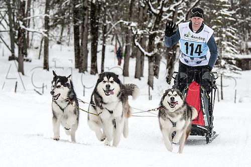 20.02.2016. Kandersteg, Bern, Switzerland. Swiss dog-sled championships.  Roman Baechtold (SUI)