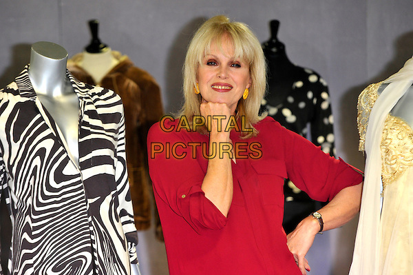 Joanna Lumley.Photocall to promote auction of her clothing worn in various TV programs, held at Kerry Taylor Auctions, Long Lane, Borough, London, England..November 12th, 2012.half length red top mannequins fist hand arm black white gold dress jacket zebra animal print .CAP/CJ.©Chris Joseph/Capital Pictures.