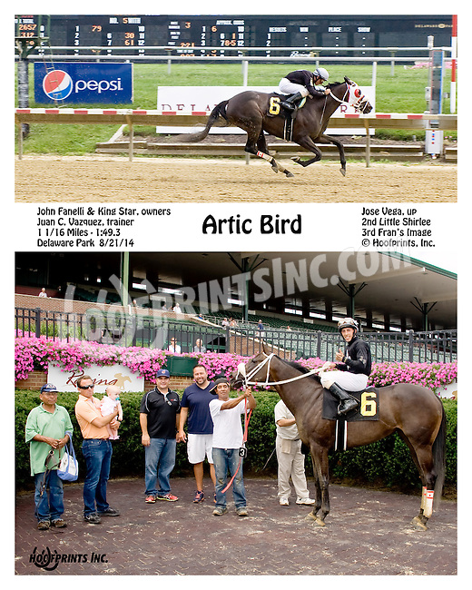 Artic Bird winning at Delaware Park on 8/21/14