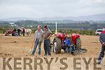 Philip Healy, Ballyheigue and Derek O'Driscoll, Ballyheigue at the Abbeydorney Ploughing Match at Corridan's Farm, Ballysheen on Monday