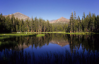 Tualame Meadow lake in Yosemite National Park, California, USA