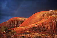 The Olgas during a rare Rainstorm and a Rainbow, Central Australia,Uluru National Park,Australia, Northern Territory