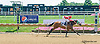 Redwarrioress winning at Delaware Park on 8/12/15
