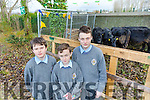 At the Angus Beef Competition Event in CBS The Green on Friday were Luke Luke McCaffrey McGill, Rory Foran, Casper krajnik