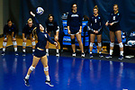 PENSACOLA, FL - DECEMBER 09: Erin Fallert (10) of Concordia University, St. Paul serves during the Division II Women's Volleyball Championship held at UWF Field House on December 9, 2017 in Pensacola, Florida. (Photo by Timothy Nwachukwu/NCAA Photos via Getty Images)