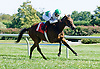 First Friend winning at Delaware Park on 9/15/12